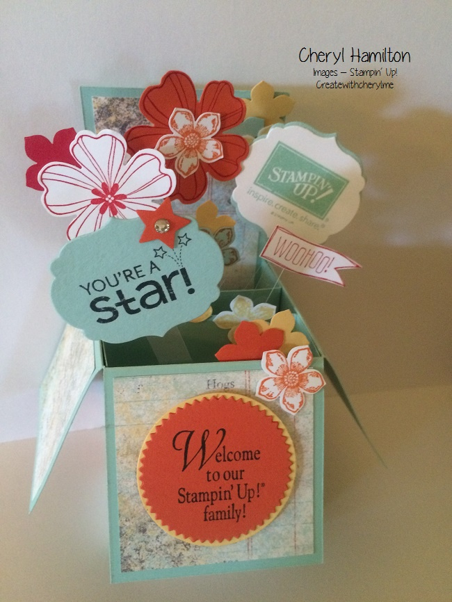 Card in a Box for my Downline Girls!