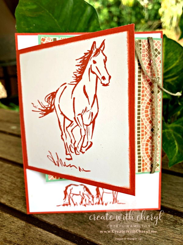 #createwithcheryl #funfoldcards #letitride #makawaorodeo #incolors